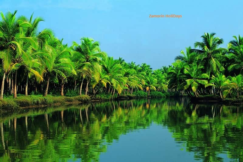 scenic-shore-excursions-cochin