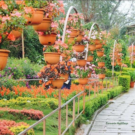 rose-gardens-munnar