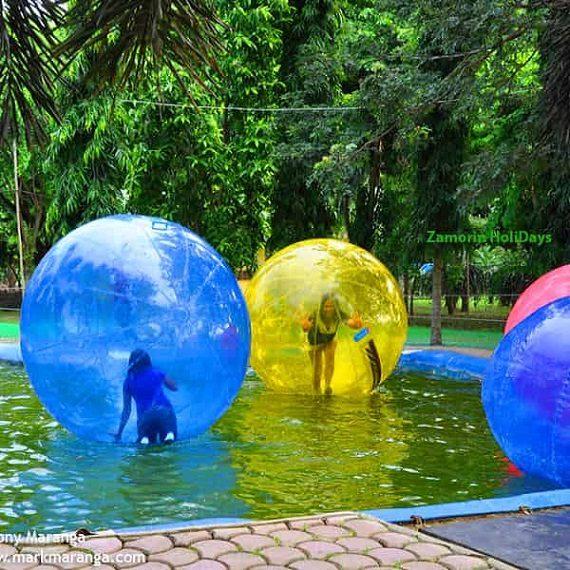 blossom-hydel-park-munnar-Waterball